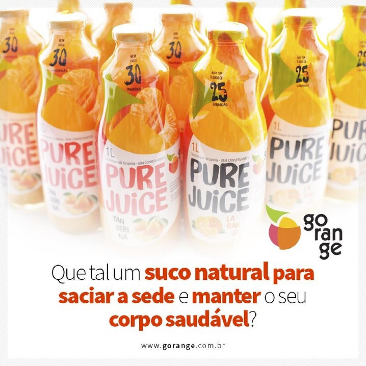 Suco Integral - Pure Juice