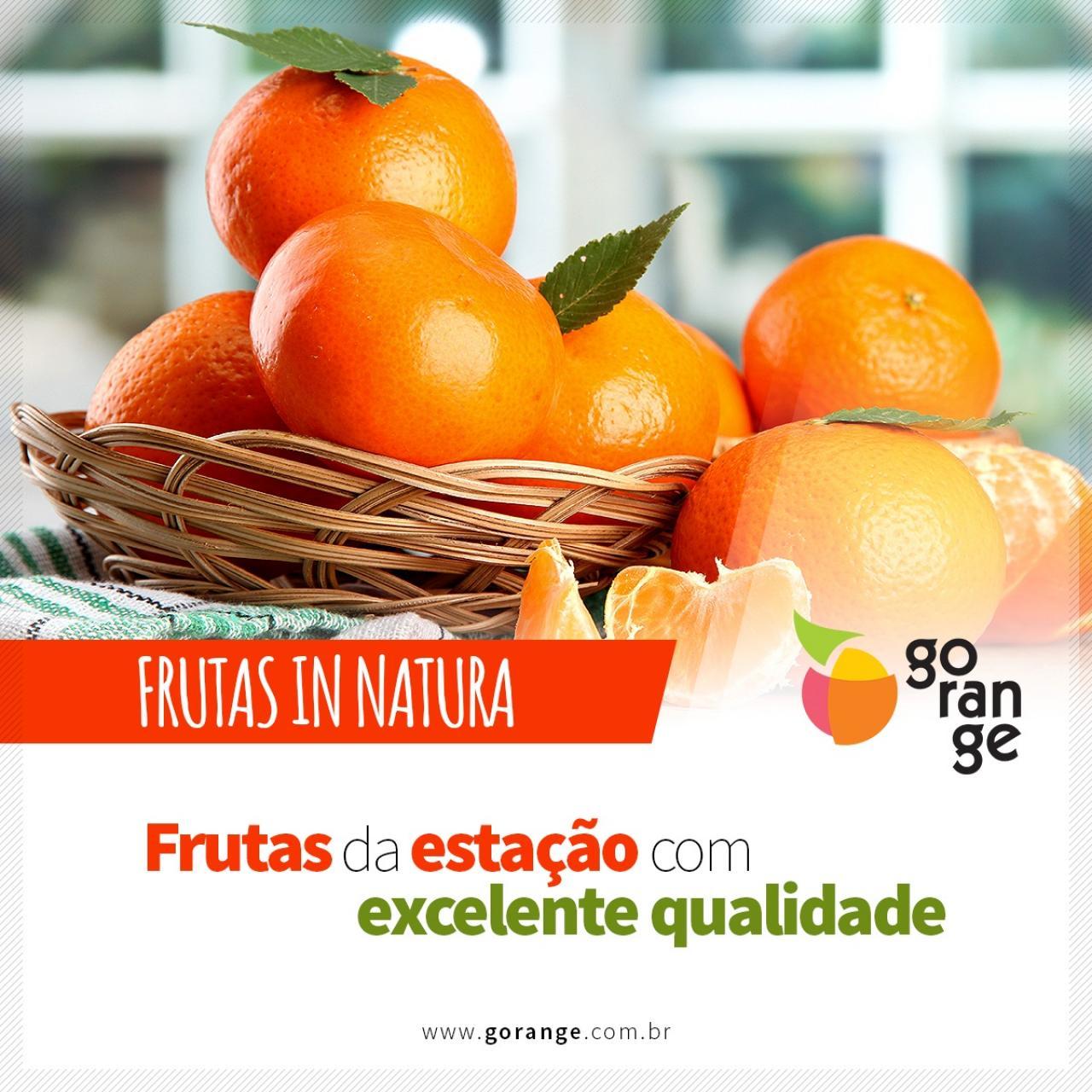 Frutas In Natura