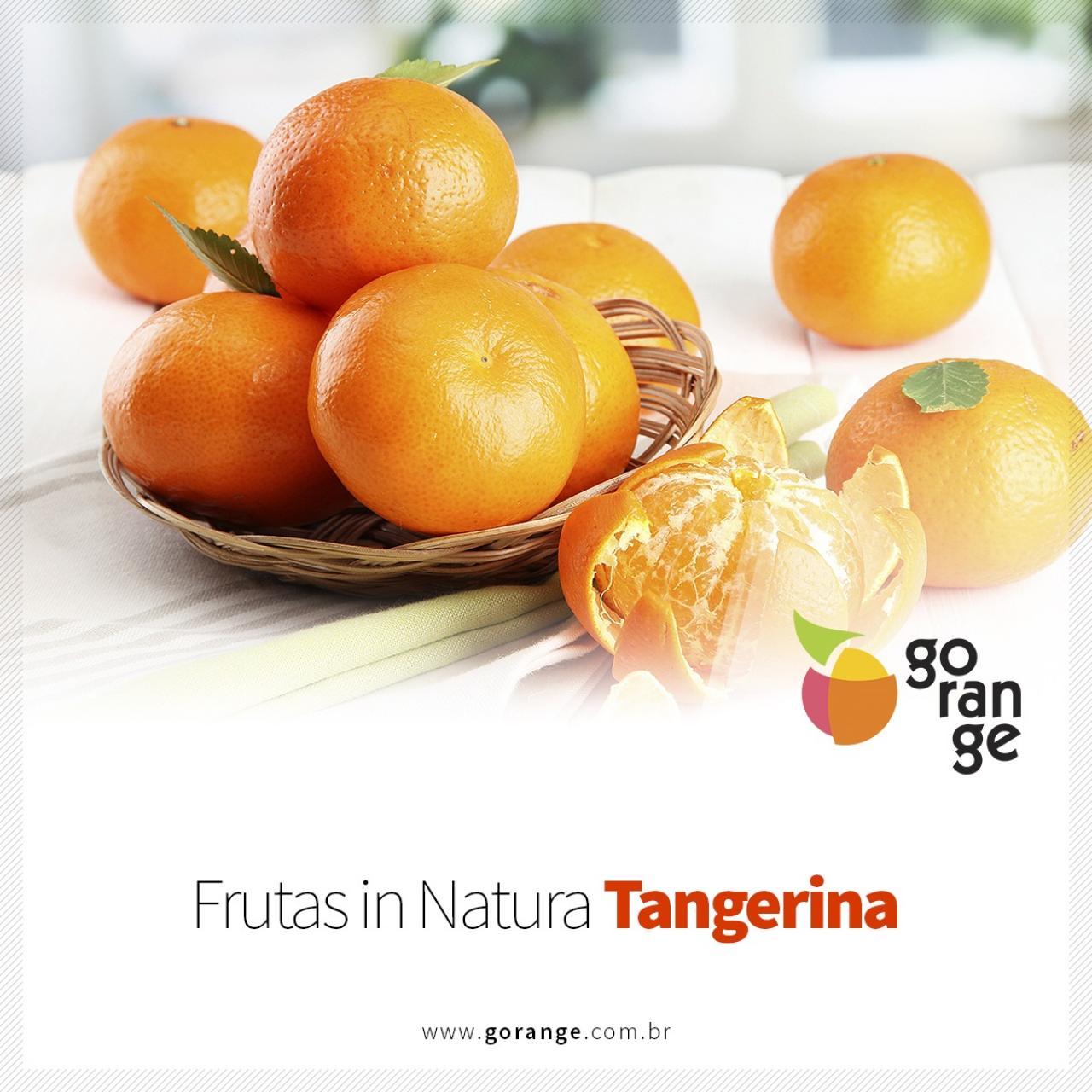 Frutas Cítricas in Natura